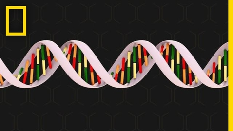 Thumbnail for entry Genetics 101 | National Geographic