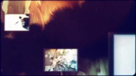 Thumbnail for entry Killer Instinct Book Trailer