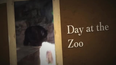 Thumbnail for entry Day at the Zoo