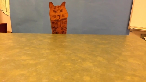 Thumbnail for entry Bella the Bobcat