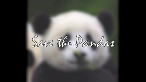 Thumbnail for entry Social Issues: The Giant Panda