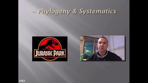 Thumbnail for entry Phylogeny & Systematics