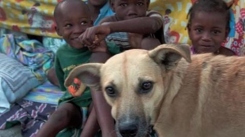 Thumbnail for entry Period 8  Haiti PBL vet med