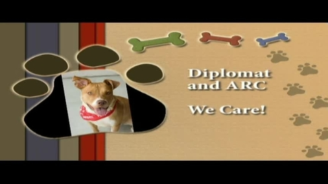 Thumbnail for entry Diplomat and ARC