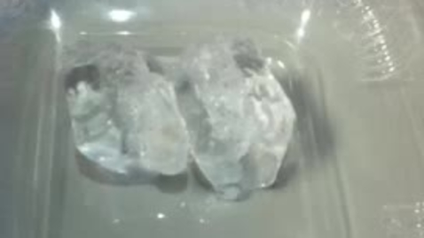Thumbnail for entry Melting Ice Time Lapse