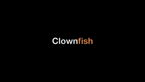 Thumbnail for entry Clownfish