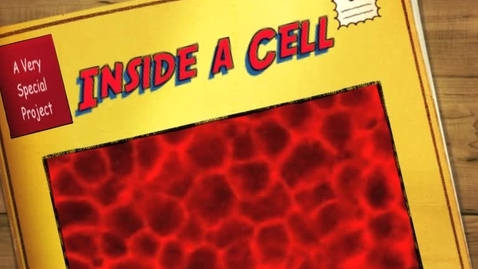 Thumbnail for entry Inside a Cell