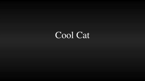 Thumbnail for entry ZebraCadabra.com - Cool Cat by Paul Borgese