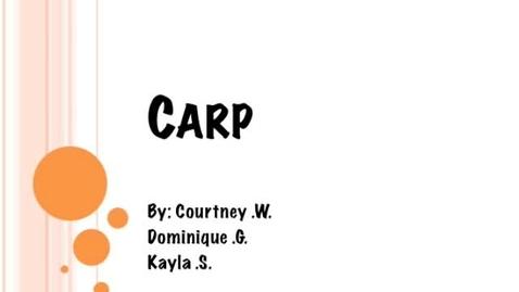 Thumbnail for entry Carp-BrainyFlix.com Vocab Contest