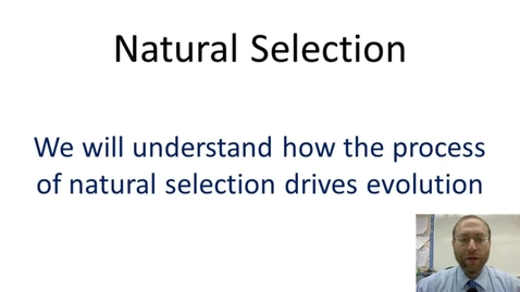 Thumbnail for entry Natural Selection
