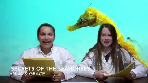Thumbnail for entry Secrets of the Seahorse