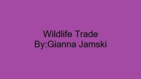 Thumbnail for entry Wildlife Trade - GJ