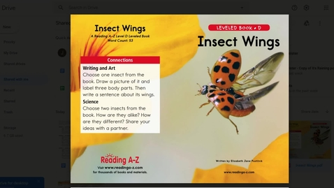 Thumbnail for entry Insect Wings