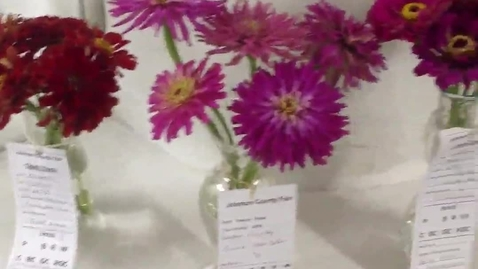 Thumbnail for entry Compound Probability at the Johnson County Fair - Flowers