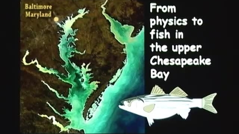 Thumbnail for entry From Physics to Fish
