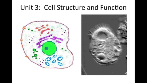 Thumbnail for entry Unit 3 Cell Structure & Function, Section 2 Looking Inside the Cell (organelles) video