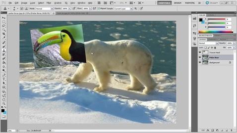 Thumbnail for entry Fantasy Animal Blending Exercise in Photoshop - Part 2