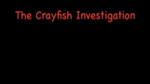 Thumbnail for entry Limesand Crayfish #4 Movie