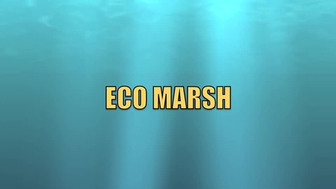 Thumbnail for entry ECO MARSH ANIMATION