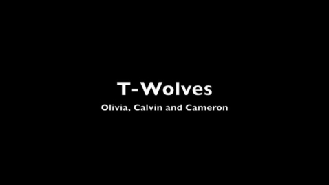Thumbnail for entry T-Wolves