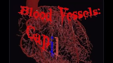 Thumbnail for entry Blood Vessels part 2