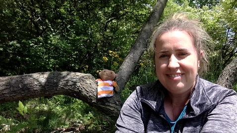 Thumbnail for entry Story Time with Ms. Genna - Wed 5/13  Our Tree Named Steve