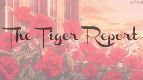 Thumbnail for entry 2018 05 11 Tiger TV