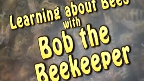 Thumbnail for entry Learning About Bees with Bob the Beekeeper