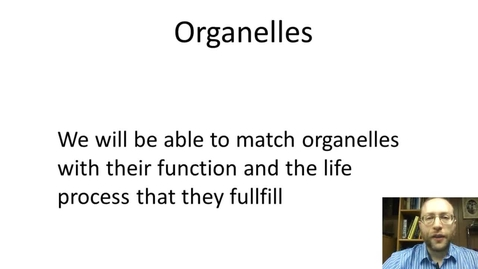 Thumbnail for entry Organelles