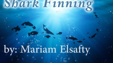 Thumbnail for entry Mariam's Documentary