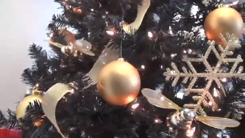 Thumbnail for entry CISD Christmas Greeting