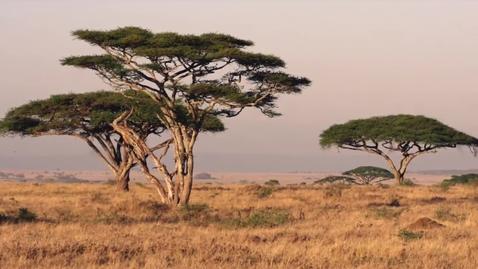Thumbnail for entry Tanzania Public Service Announcement