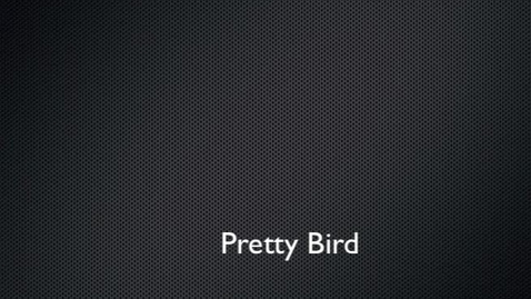 Thumbnail for entry ORIGAMI BIRD