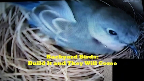 Thumbnail for entry GaETC Backyard Birds: Build It and They Will Come