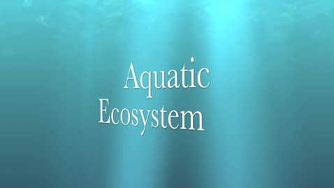 Thumbnail for entry Aquatic Ecosystems
