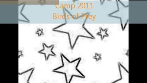 Thumbnail for entry Birds of Prey - Tim and Hayley