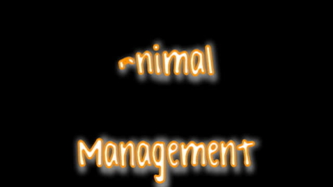 Thumbnail for entry Animal Management