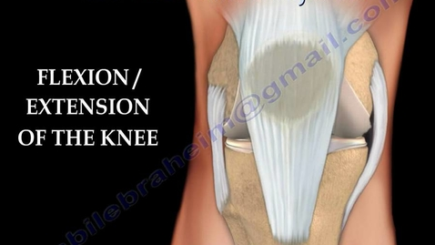 Thumbnail for entry Knee  injury ,Injuries - Everything You Need To Know - Dr. Nabil Ebraheim