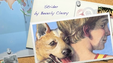 Thumbnail for entry Abel - Strider Book Reviewa