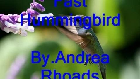 Thumbnail for entry Hummingbird
