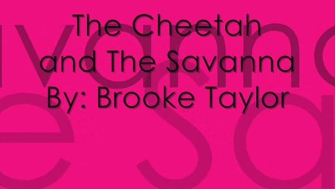 Thumbnail for entry Cheetah in the Savanna by Brooke Taylor
