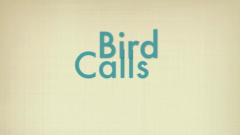 Thumbnail for entry Bird Calls Demonstration