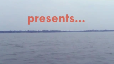 Thumbnail for entry Seagrass