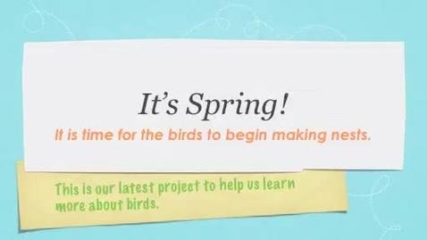 Thumbnail for entry Bird Nest Materials