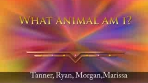 Thumbnail for entry What Animal Am I?