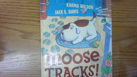 Thumbnail for entry Moose Tracks!