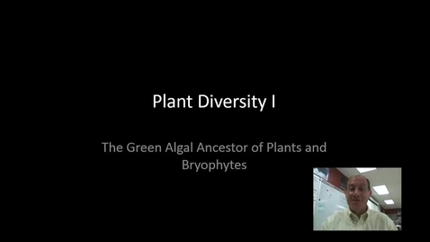 Thumbnail for entry Plant Diversity