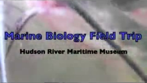 """Thumbnail for entry Marine Biology Class """"Sailing Classroom"""""""