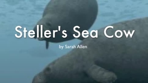 Thumbnail for entry Steller's Sea Cow -Allen