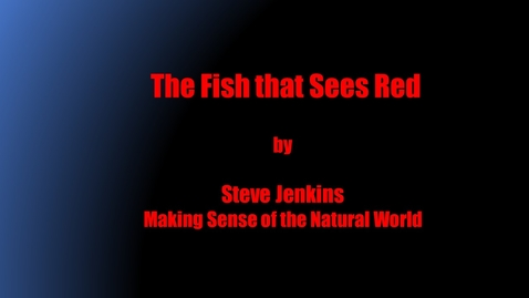 Thumbnail for entry The Fish that Sees Red by Steve Jenkins, Making Sense of the Natural World